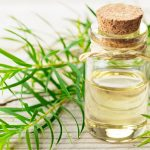 Can You Use Tea Tree Oil To Deter Roaches?