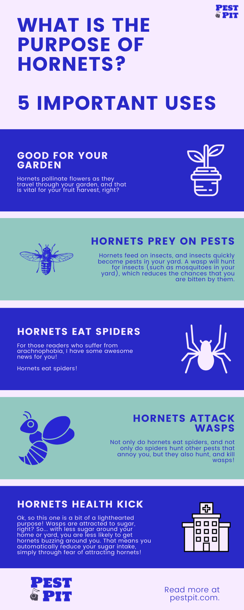 What Is The Purpose Of Hornets 5 Important Uses