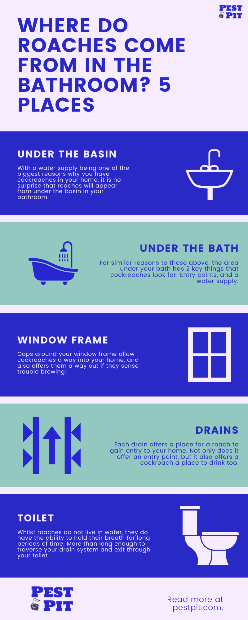 Where Do Roaches Come From In The Bathroom 5 Common Places Infographic