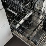 How To Get Rid Of Ants In Your Dishwasher - 5 Methods