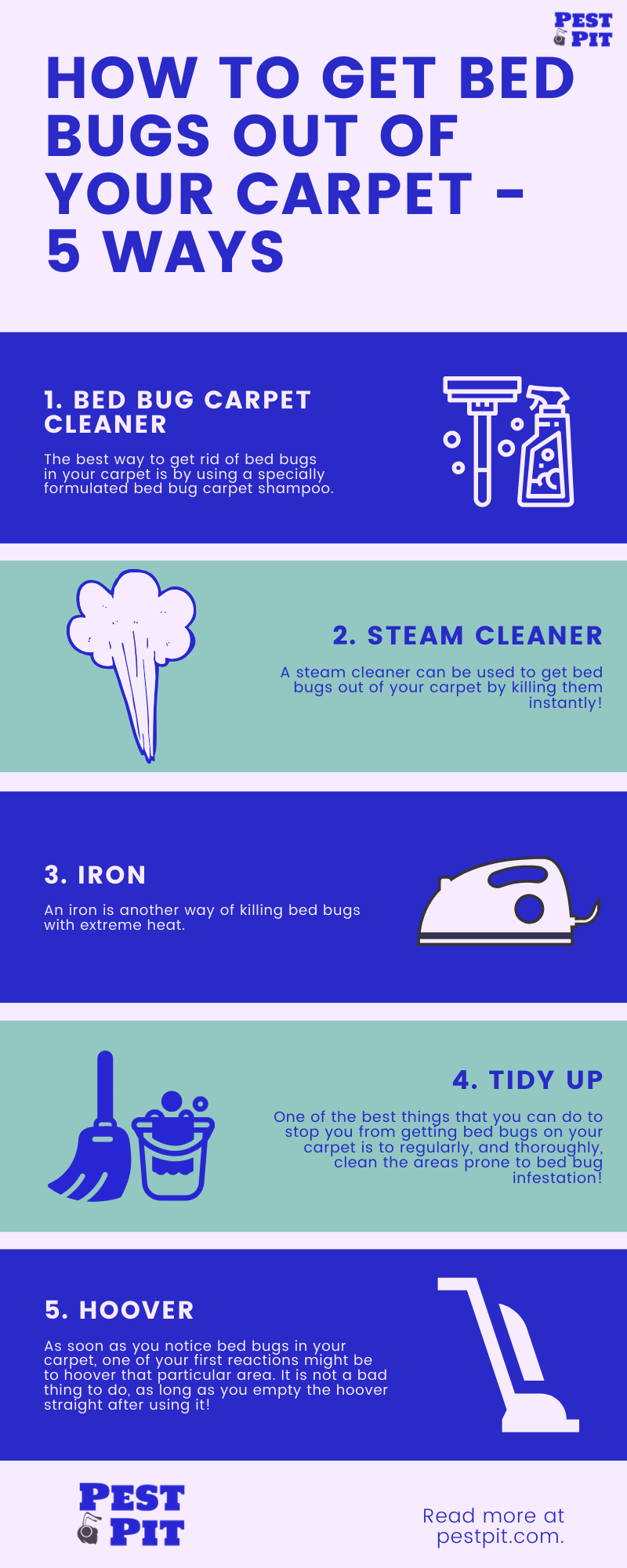 How To Get Bed Bugs Out Of Your Carpet Infographic