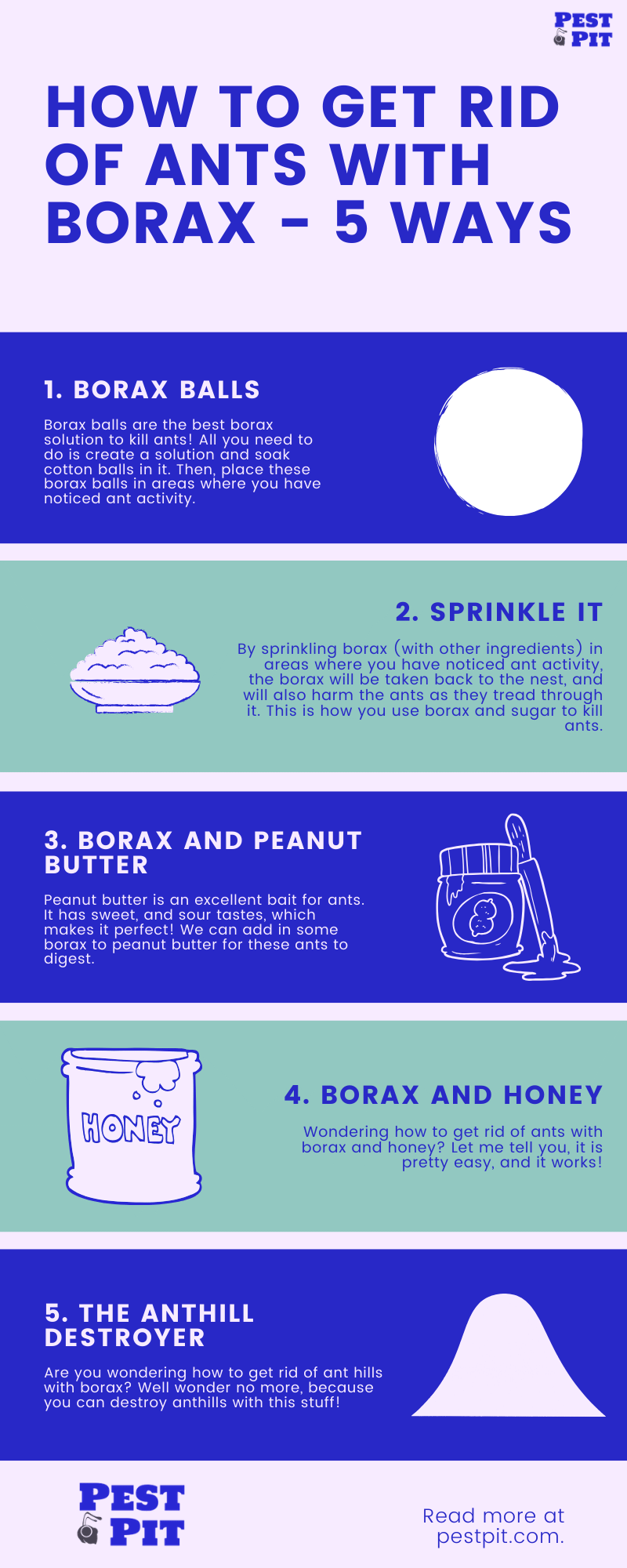 How To Get Rid Of Ants With Borax Infographic