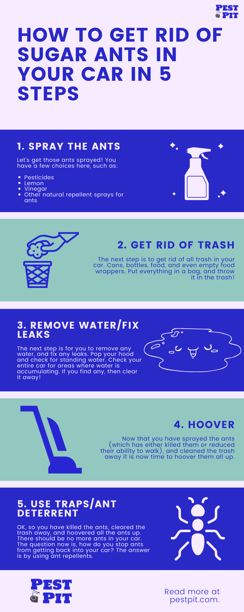 How To Get Rid Of Sugar Ants In Your Car Infographic