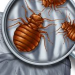 9 Bugs Commonly Found In Beds