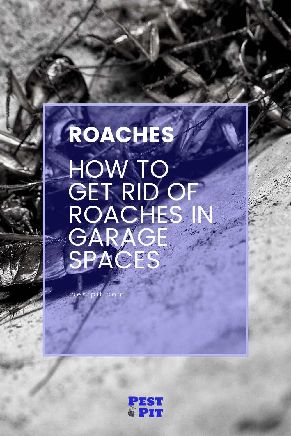 How To Get Rid Of Roaches In Garage Spaces