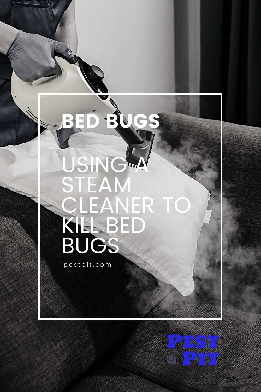 Using A Steam Cleaner To Kill Bed Bugs