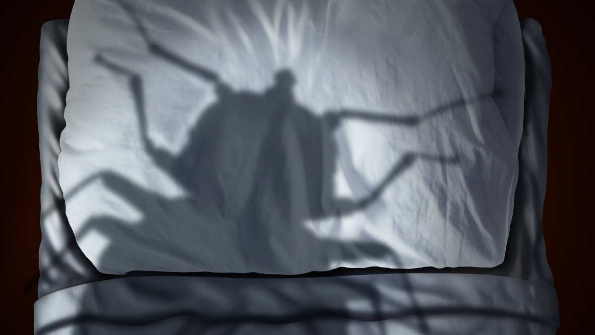 shadow of bug on a bed